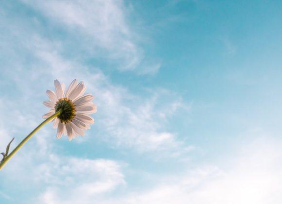 6. Station – Jesus erscheint den Jüngern